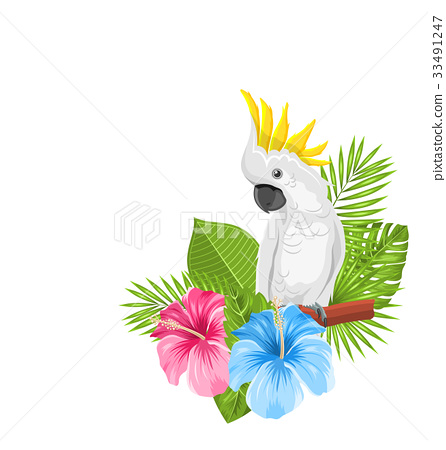 Parrot White Cockatoo with Colorful Exotic Flowers 33491247