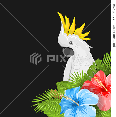 Parrot White Cockatoo with Colorful Hibiscus 33491248