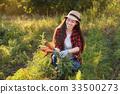 gardener with carrots in a vegetable garden 33500273