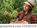woman gardener picking peaches 33500330