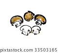 버섯 33503165