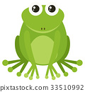 Green frog sitting on white background 33510992