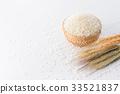 水稻 稻米 米 33521837