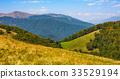 meadow, autumn, landscape 33529194
