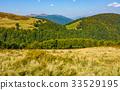 grassy meadow on a hillside in autumn 33529195
