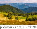 beech trees meadow on hillside in autumn 33529198