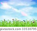 grass with flower and butterfly ladybug with sky 33530795