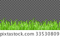 real green grass on transparent background vector 33530809