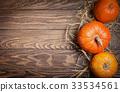 Autumn Pumpkin Thanksgiving Background 33534561