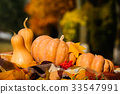 Autumn thanksgiving still life with pumpkins 33547991