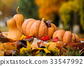 Autumn thanksgiving still life with pumpkins 33547992