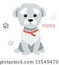 Vector sketch funny maltese dog sitting 33549470