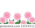 Dahlia 33554511