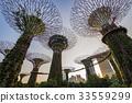 SINGAPORE City skyline Marina Bay  33559299
