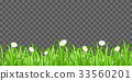 grass and flower on transparent background vector 33560201