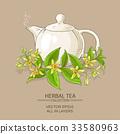 vanilla, illustration, vector 33580963