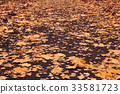 Autumn loose road with yellow leaves 33581723