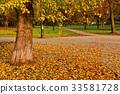 City square in golden autumn foliage 33581728