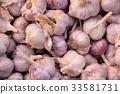 Harvest of garlic. Growing vegetables. Agriculture 33581731