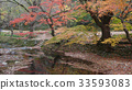 계곡, 단풍나무, 선운산 33593083