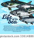 life oceanarium poster 33614886