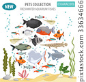 Freshwater aquarium fishes characin icon set  33634666