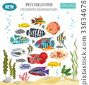 Freshwater aquarium fishes cichlid icon set  33634678