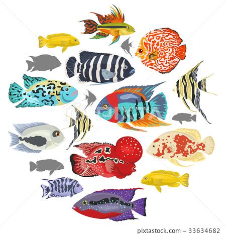 Freshwater Aquarium Fishes Cichlid Icon Set Stock Illustration
