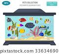 fish aquarium vector 33634690