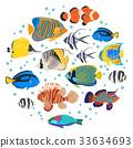 Freshwater aquarium coral  fish icon set  33634693