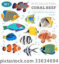 fish, vector, clown 33634694