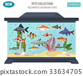 fish, aquarium, vector 33634705
