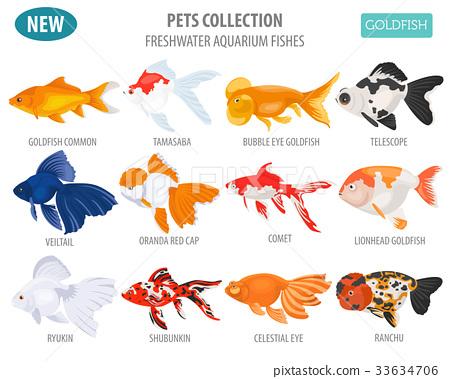 Freshwater Aquarium Gold Fish Icon Set Stock Illustration