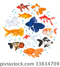 Freshwater aquarium gold fish icon set  33634709
