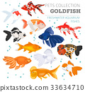 Freshwater aquarium gold fish icon set  33634710