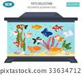 fish aquarium vector 33634712