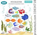 Freshwater aquarium labyrinth fish icon set  33634718