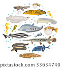 Freshwater aquarium unusual fish icon set 33634740