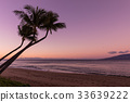Tropical Maui Sunset 33639222