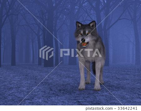 Wolf 33642241