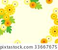 flower, flowers, frame 33667675