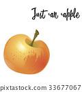 apple, fruit, autumn 33677067