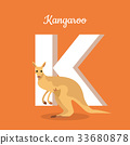 alphabet, education, kangaroo 33680878