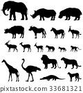 非洲 非洲人 动物 33681321
