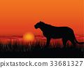 African landscape Sunset skyline Animal background 33681327