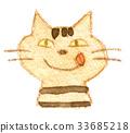 貓 貓咪 毛孩 33685218
