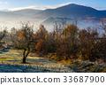 mountain, orchard, autumn 33687900