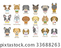 dog, dogs, genu 33688263