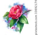 花朵 花 花卉 33692174