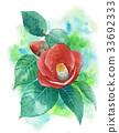 山茶花 日本山茶 花朵 33692333